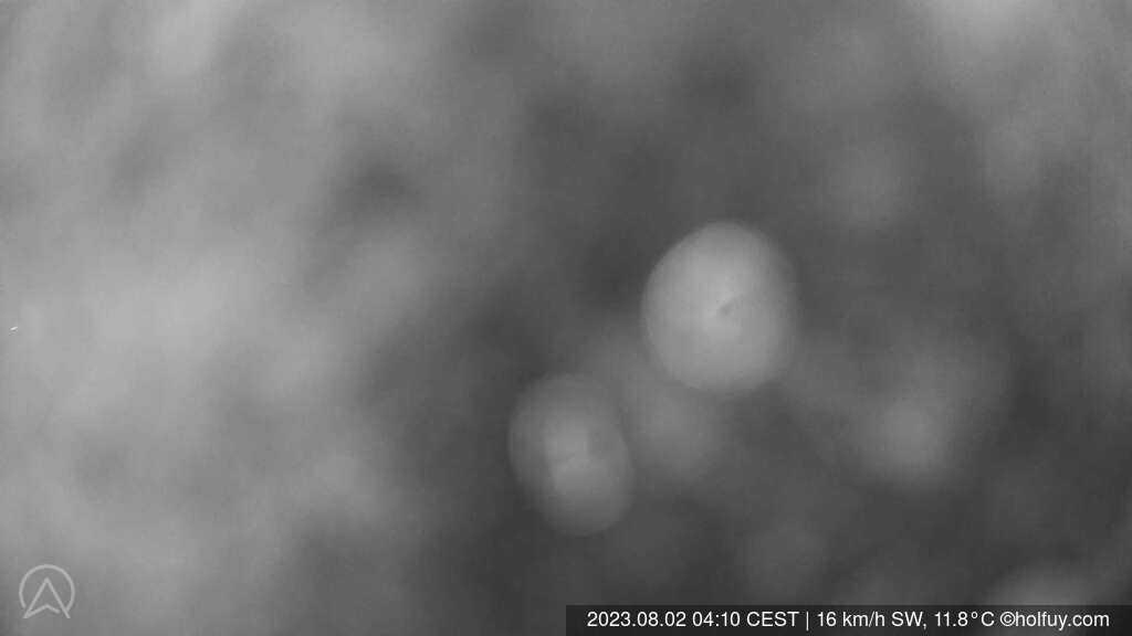 Wald ZH Alp Scheidegg